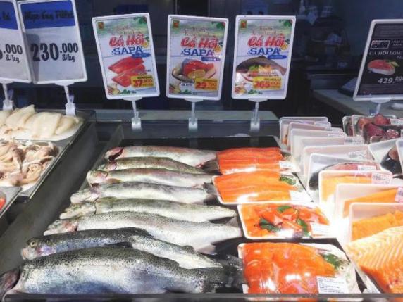 Cá hồi được bày bán tại các siêu thị