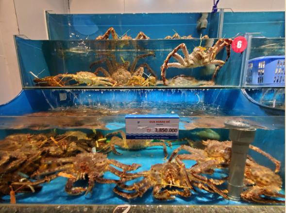 Cua hoàng đế được bày bán tại các cửa hàng hải sản